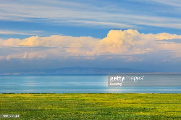 beautiful grasslands and lake - qinghai province stock photos and pictures