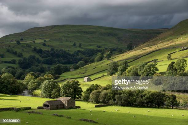 Beautiful green countryside at Muker in Swaledale, North Yorkshire, England