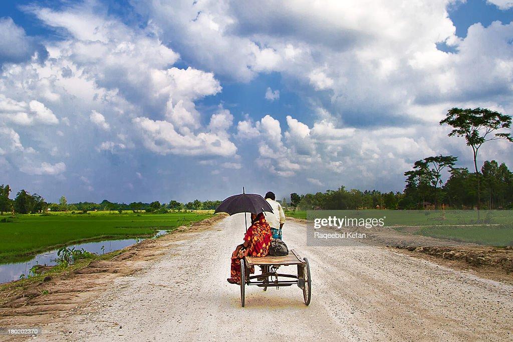 Beautiful Green Landscape in Rural Bangladesh : Stock Photo
