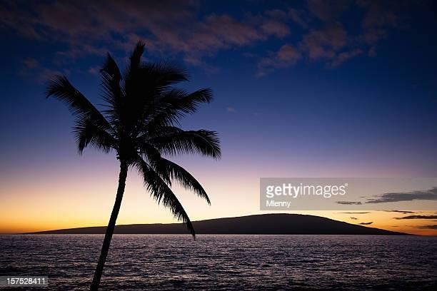素晴らしいハワイの夕日 - ラハイナ ストックフォトと画像