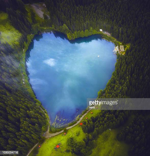 beautiful heart shaped lake and forest - environment stock pictures, royalty-free photos & images
