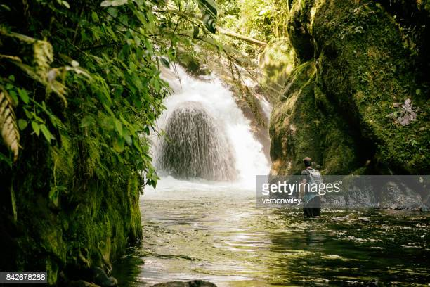 beautiful hike in the jungle with waterfall - ecuador stock pictures, royalty-free photos & images