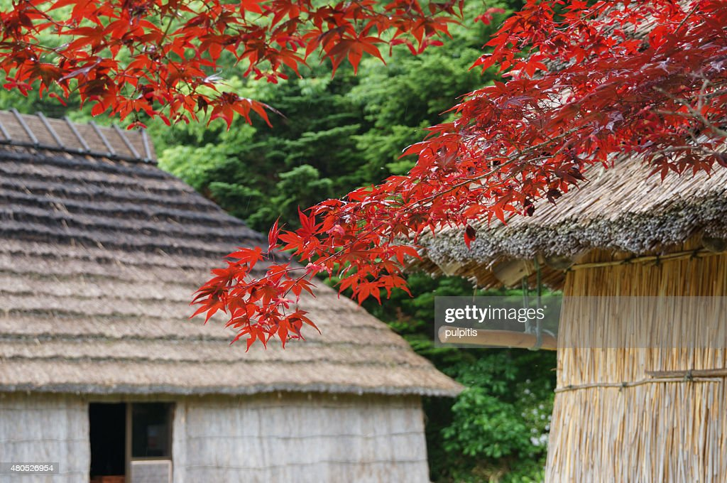 Beautiful house Hokkaido : Stock Photo
