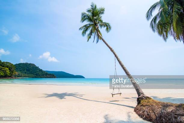 beautiful isolated beach in thailand (koh kut) with a swing - paradis photos et images de collection