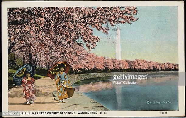 Beautiful Japanese Cherry Blossoms A bit of old Japan transplanted to Potomac Park The Misses Sumi and Sadi Tamura daughters of Mr Teijiro Tamura...