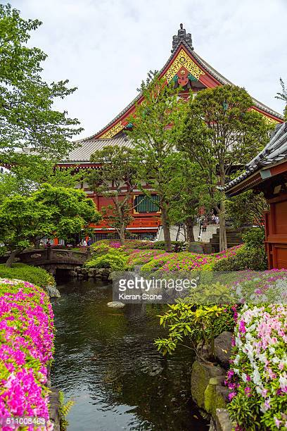 Beautiful Japanese garden view with colourful flowers and pond at Sensoji Temple, Asakusa, Tokyo, Japan.