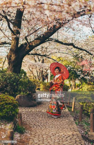 beautiful japanese woman in kimono - cherry blossom stock pictures, royalty-free photos & images
