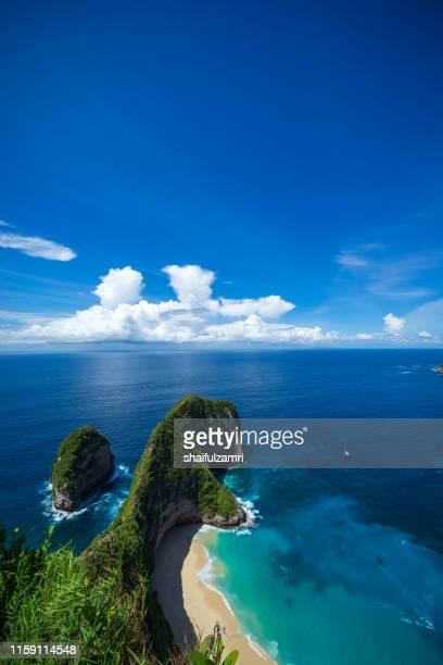 beautiful kelingking beach and cliffs in nusa penida, bali, indonesia - shaifulzamri 個照片及圖片檔
