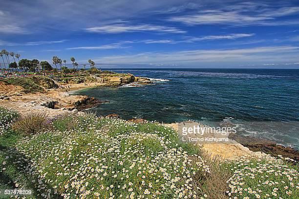 Beautiful La Jolla Cove, California