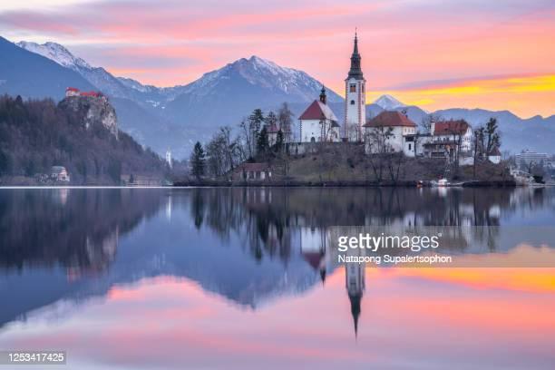beautiful lake bled in morning time, slovenia - bledsjön bildbanksfoton och bilder