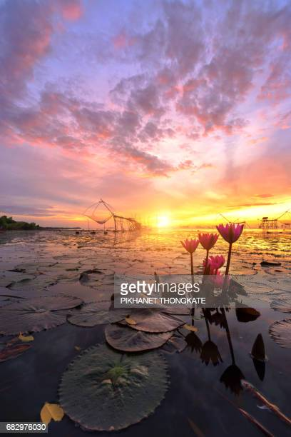Beautiful lake with sunrise ,Pakpra,Phatthalung,Thailand