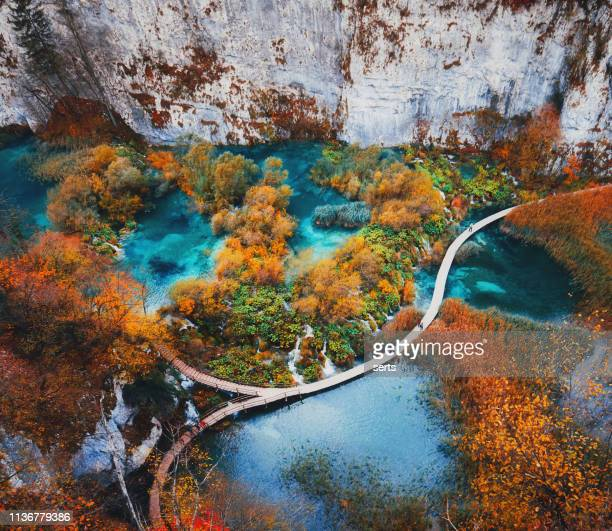 hermoso paisaje en el lago de plitvice, croacia - croacia fotografías e imágenes de stock
