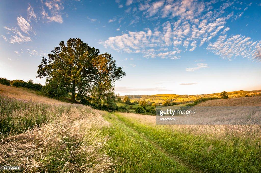コッツウォルズは、イギリスの美しい風景 : ストックフォト