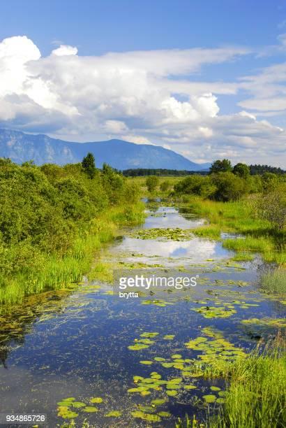 Beautiful landscape  near Cranbrook, British Columbia ,Canada