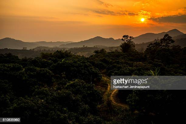Beautiful landscape of forest mountain layer, Thailand