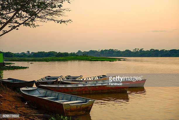 beautiful landscape of rio cuiaba, brazil - cuiaba river stock photos and pictures