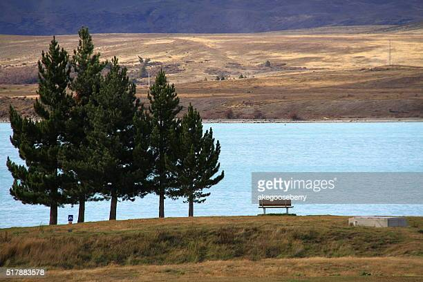 Beautiful landscape of tree, lake and snow mountain at Lake Tekapo in South Island, New Zealand