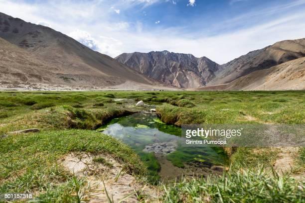 Beautiful landscape on the way to Pangong Tso (lake), Leh-Ladakh, Jammu and Kashmir, India