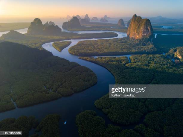 beautiful landscape phangnga bay leading by curve of canals and mangrove forest, thailand. - 運河 ストックフォトと画像