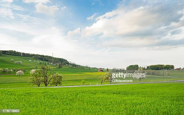 beautiful landscape - crmacedonio stock pictures, royalty-free photos & images