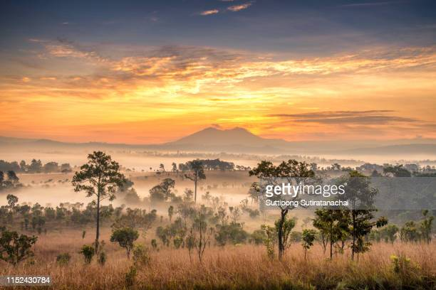 beautiful landscape scenic view of dramatic clouds sky and fog with mountain and tree in the morning shot. majestic component background of the nature - isla de borneo fotografías e imágenes de stock