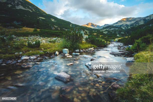 beautiful landscape. stream in mountains. - pirin mountains stock pictures, royalty-free photos & images