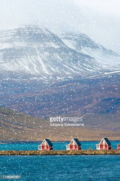 beautiful landscape view of red house in fisherman village of iceland with snow mountain and lake view during snow blizzard fall. - islande photos et images de collection