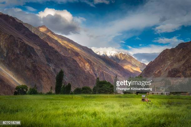Beautiful Landscape view of rocky and snow-capped mountain with agricultural field at Turtuk village, Leh Ladakh, India