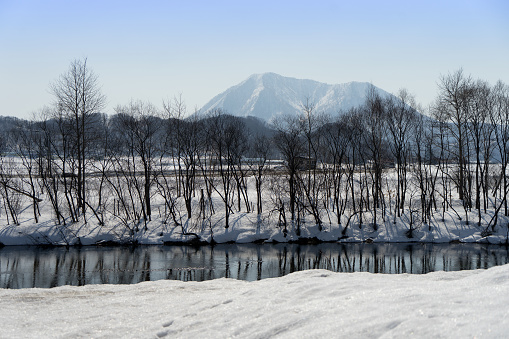 beautiful landscape winter season at hokkaido Japan 2019 - gettyimageskorea