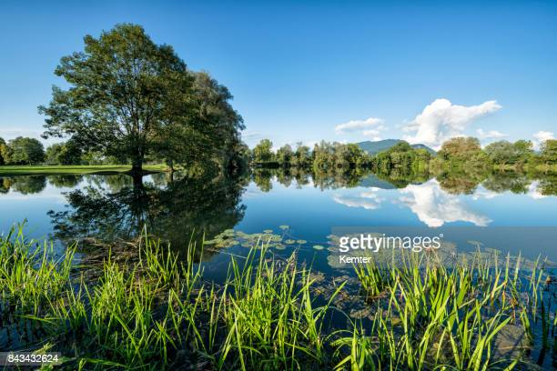 beautiful landscape with idyllic lake and reflections - vorarlberg stock photos and pictures