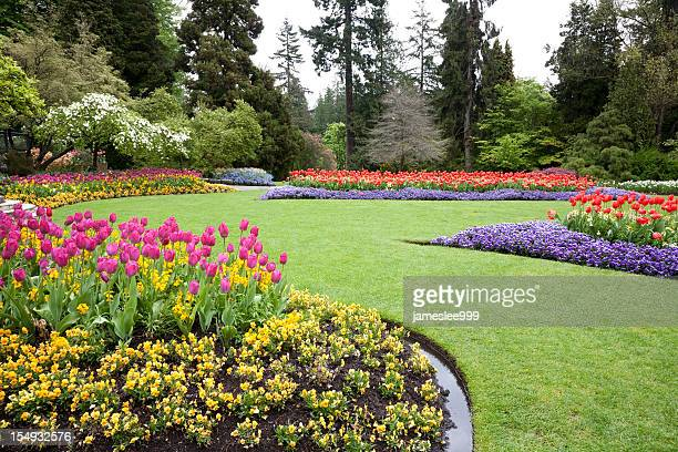 a beautiful landscaped garden of flowers - landscaped stock pictures, royalty-free photos & images