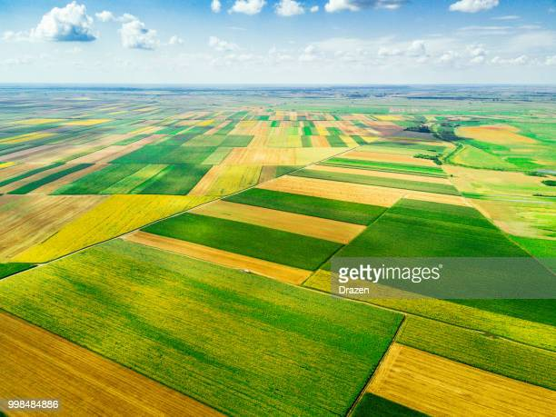 beautiful landscapes and agriculture, farms and ranches - corn field stock photos and pictures