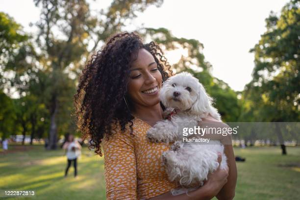 beautiful latino woman and her white poodle portrait - off leash dog park stock pictures, royalty-free photos & images