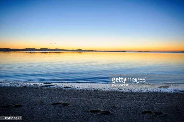 beautiful light after the sunset, the catlins, south island, new zealand - peninsula stock pictures, royalty-free photos & images