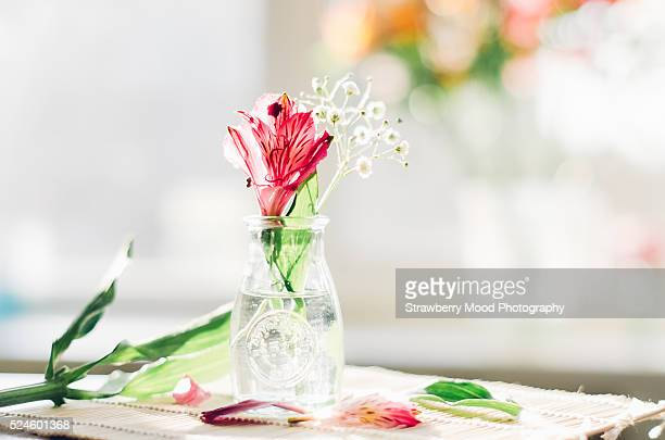 Beautiful little bunch of Alstroemeria flowers in pure glass vase on a wooden surface against a window background on a sunny day at home