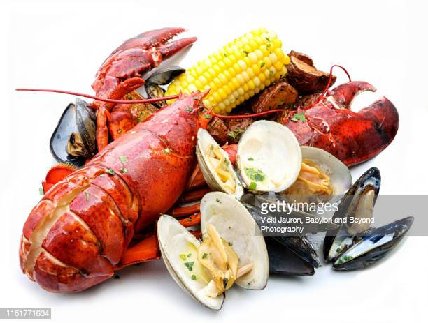 beautiful lobster and seafood plate against white background - 魚介類 ストックフォトと画像