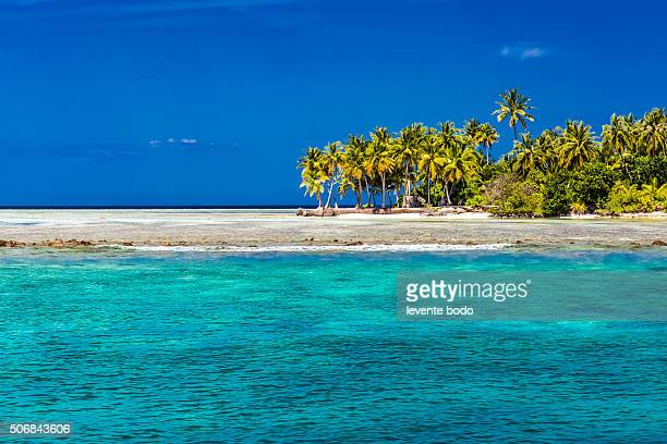 Beautiful Maldives beach, coral reef and blue lagoon with palm trees