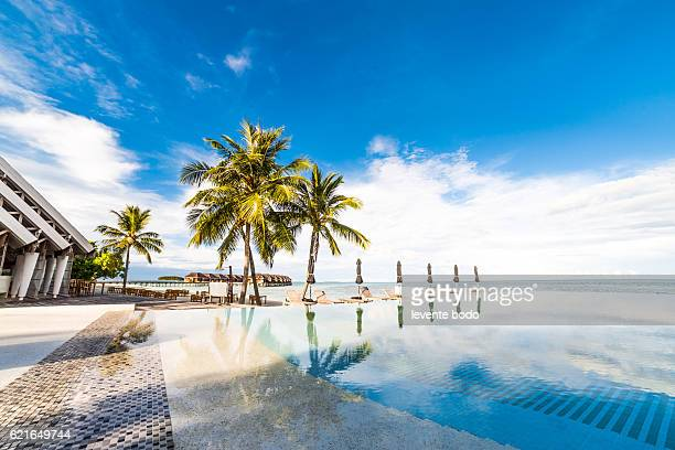 Beautiful Maldives beach with a pool and palm trees
