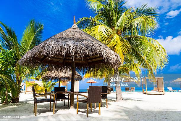 Beautiful Maldives beach with palmtrees and lounge area