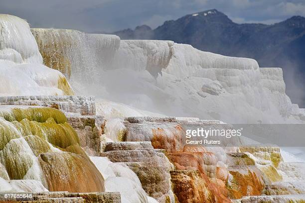 beautiful mammoth hot springs, yellowstone national park, wyoming, united states - 炭酸石灰 ストックフォトと画像