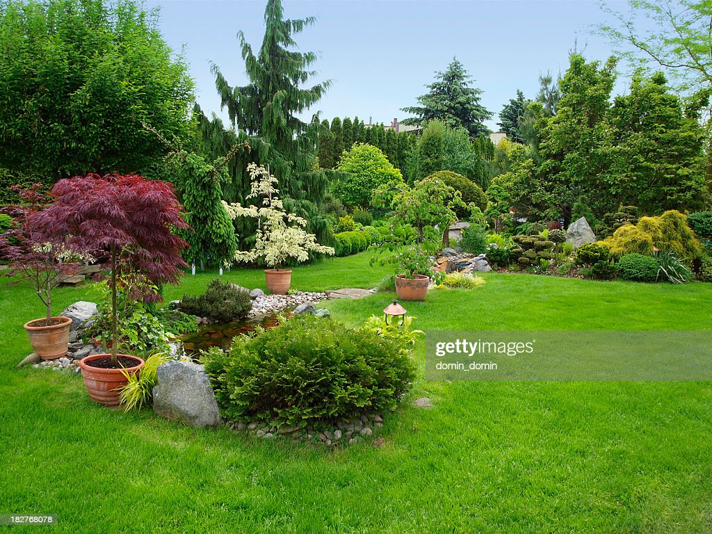 Beautiful manicured garden with bushes, trees, stones, pond, juicy grass : Stock Photo