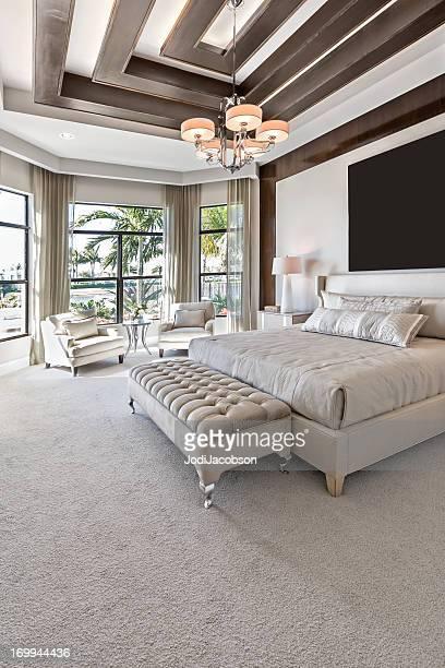 美しいマスターベッドルームのインテリア