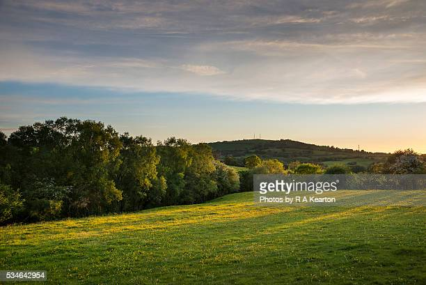 a beautiful may evening in the countryside - may stock pictures, royalty-free photos & images
