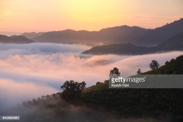Beautiful misty landscape view in morning over Mekong river at Phuhuayesan viewpoint