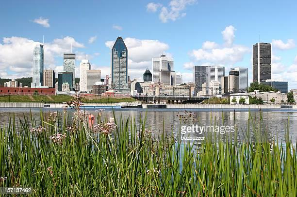 Magnifique ville de Montréal en été