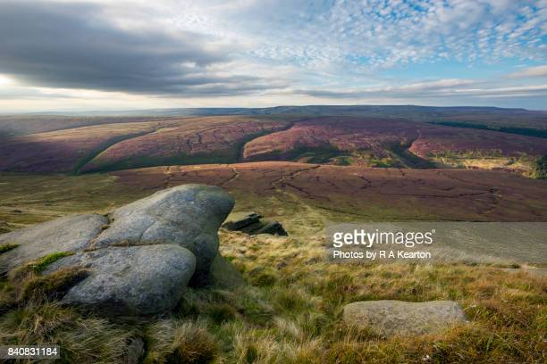 beautiful moorland landscape in late summer sunlight - north stock pictures, royalty-free photos & images