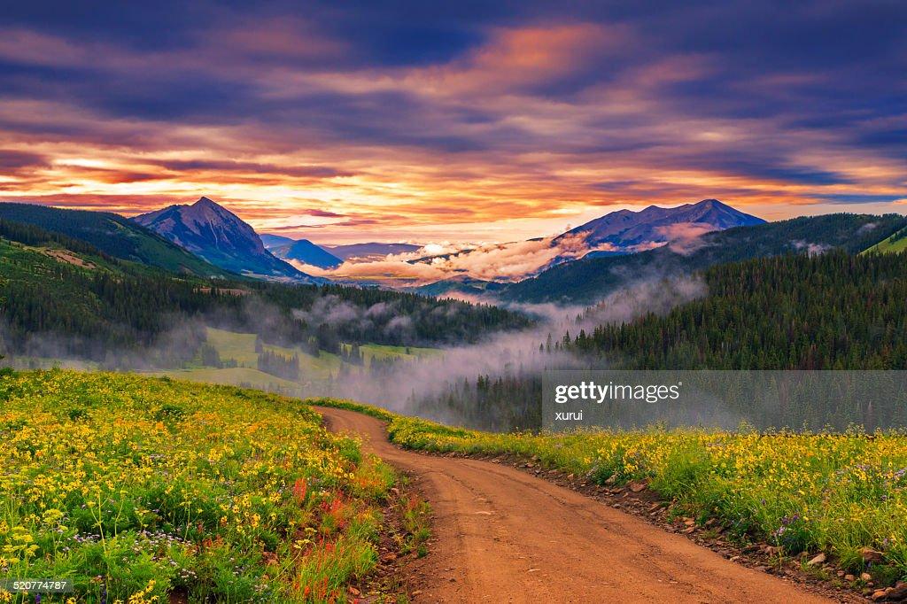 beautiful morning : Stock Photo