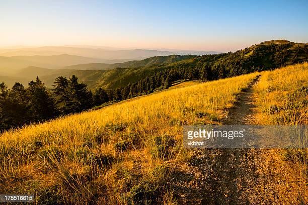 beautiful morning-mores mountain idaho - idaho stock pictures, royalty-free photos & images