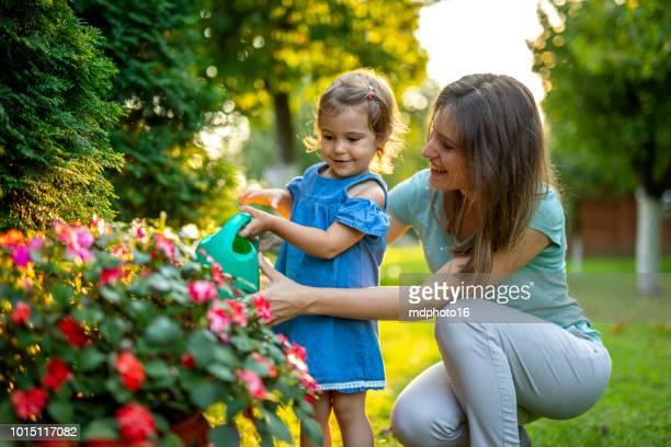 belle mère et mignonne petite fille d'arrosage des plantes dans le jardin - jardin fleuri photos et images de collection