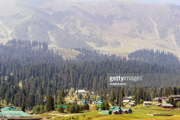 beautiful mountain landscape of gulmarg, jammu and kashmir state, india. - shaifulzamri stock-fotos und bilder